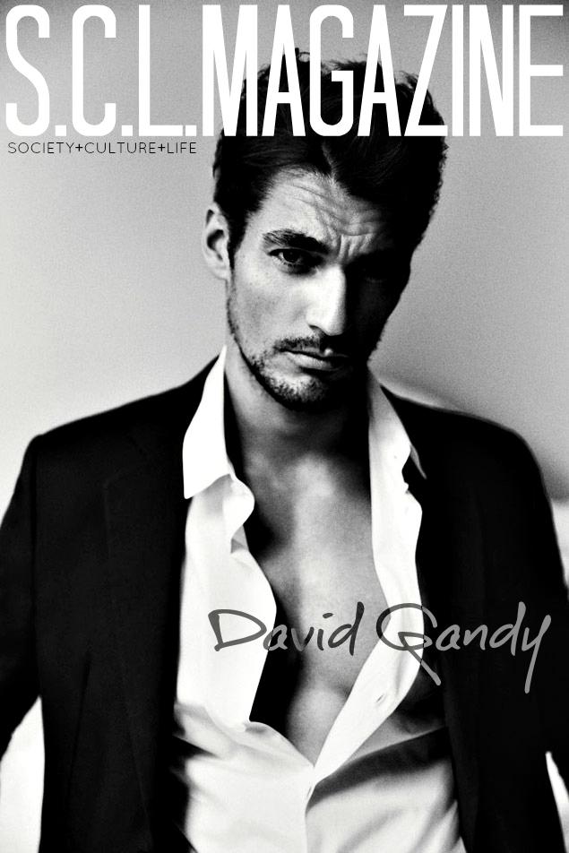 David Gandy 01